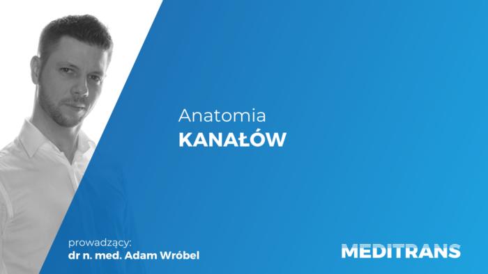 Anatomia kanałów /- nagrane webinarum wysyłamy w ciągu 24 h!